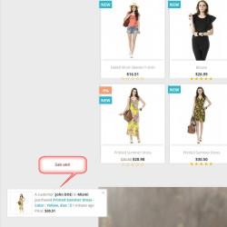Sale Ticker – Display REAL TIME sales module